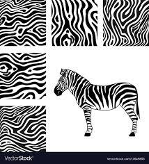 Zebra Patterns Interesting Zebra And Zebra Patterns Royalty Free Vector Image