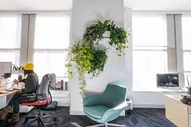 office greenery. Wall Mounted Shelf Planters Help Lift Greenery Off The Ground, Ensuring Its Visibility From Any Angle. There Are Some Tight Corners At TED Office, Office
