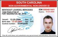 Drivers License - Permit Driving International