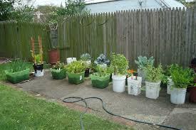 vegetable garden for beginners outdoor decoration ideas vegetable garden for beginners
