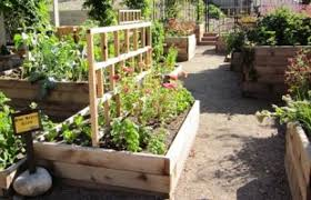 Small Picture Raised Beds Who Has a Cool Design Vegetable Gardener