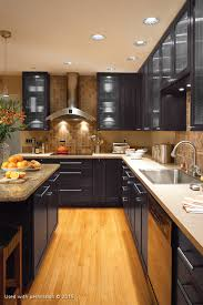 Kitchen Over Cabinet Lighting Function Over Form Kitchen Edition Southwest Suburban Chicagoland