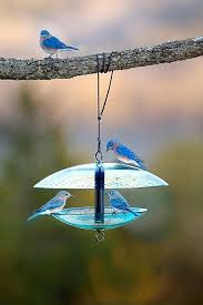 coming soon in glass bird feeders diy glass bird feeders