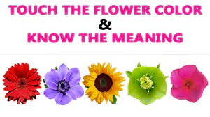flower color meaning speak the