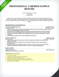 Resume Format Skills Section Resume Template Ideas