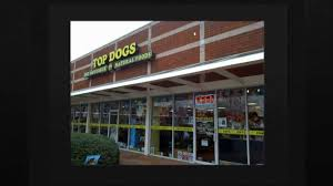 Image result for top dogs kennesaw