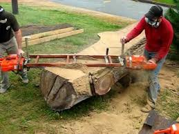 tree trunk furniture. slabcutting tree trunk for handcrafted furniture d