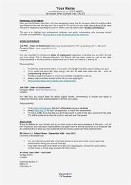 Importance Of Resume Example Awesome Ability Summary Resume Examples