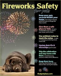 fire works safety fireworks safety tips for pets visual ly