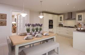 Procter PhotographyDavid Wilson Homes Show Home Interiors - Show homes interiors