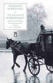 the hound of the baskervilles essay the hound of the baskervilles  the hound of the baskervilles broadview press