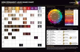 Joico Lumishine Color Chart Joico Lumishine Demi Permanent Lquid Shade Chart 4 Jan 2018