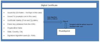 Digital Certificate Active Directory Certificate Services Part 1 Digital Certificate