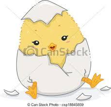 chicken hatching clipart. Plain Hatching Chick Hatching  Csp18845859 On Chicken Clipart