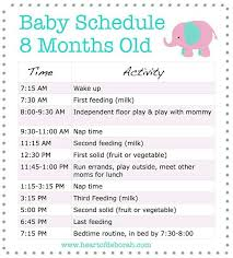 Baby Schedule Baby Baby Schedule 8 Month Old Baby New