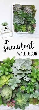 i love decorating with succulents and this easy succulent shadow box decor is perfect so