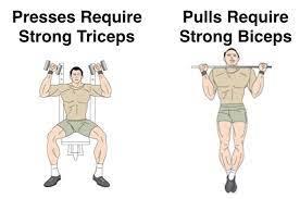10 best arm exercises for bigger biceps