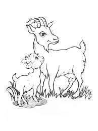 Small Picture Goat coloring pages Download and print goat coloring pages