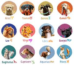 2018 Zodiac Chart 2018 Horoscopes Year Of The Dog For Western Zodiac Signs