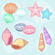 Seashell Design Seashell Designs Collection Vector Free Download