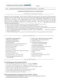 Consultant Resume Example Best Human Resources Consultant Resume Sample Functional Professional