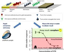 Development And Validation Of A Novel Lateral Flow Immunoassay (Lfia ...