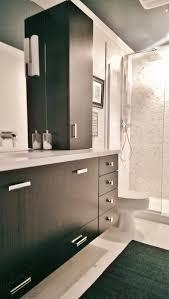 Chicago Bathroom Remodel Decoration Custom Decorating Ideas