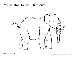 Elephant Asian Coloring Page