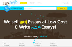 top essay writing services mentioned by students in  essayzoo org