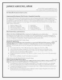 Property Management Expenses Spreadsheet Beautiful Resume Writing Simple Resume Builder Service