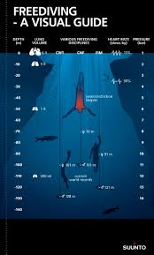 A Visual Guide To Freediving Suuntodive Apr 15 2015 In