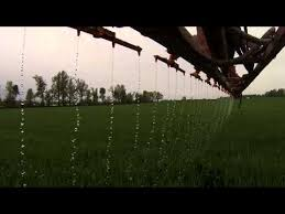 Chafer Stream Bars Post Applying Liquid Nitrogen To Wheat