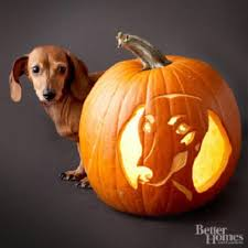 Adorable Dog Breed Pumpkin Carving Ideas.