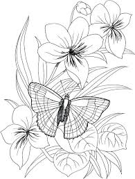 Coloring Pages Of Butterflies And Flowers Butterfly Flower Coloring