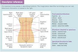 Charting Bowel Sounds Ostomy Documentation Tips Wound Care Advisor