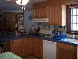 kitchen room magnificent refacing oak kitchen cabinets how to