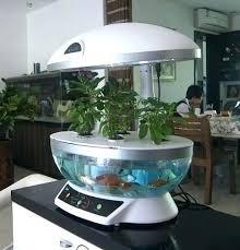 diy hydroponic garden indoor hydroponic garden grow food indoors indoor hydroponic herb garden diy indoor hydroponic herb garden