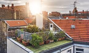 with space limited and concrete abundant gardening in an urban environment can pose some challenges