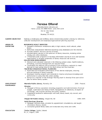 functional resume format example functional resume format example examples of resumes