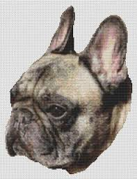 French Cross Stitch Charts Brindle French Bulldog