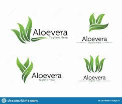 Shampoo Logo Design Fresh Aloe Vera Logo Design Cosmetic Or Shampoo Logo