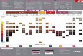 Framesi Framcolor 2001 Color Chart Haircolor Hairstyle