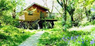 Tree House Resort In Hinchinbrook Island Australia  I Want To Go Treehouse Accommodation Ireland