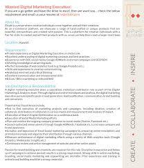 Essay on annabel lee   Demonstrate problem solving skills resume