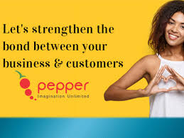 Pepper Designs Pvt Ltd Pepper Designs Creative Design And Marketing Company By
