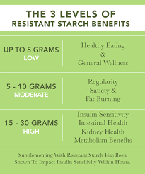 Resistant Starch Food Chart