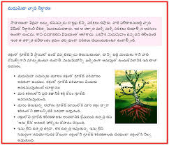 Tb Patient Diet Chart In Telugu Diet For Tuberculosis