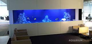 office fish tank. Large Bespoke Marine Aquarium In Office Fish Tank