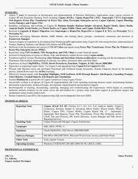 cognos sample resume template cognos sample resume