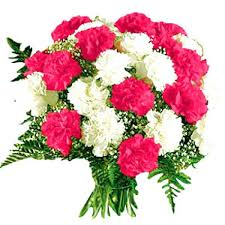 12 red white carnations bunch